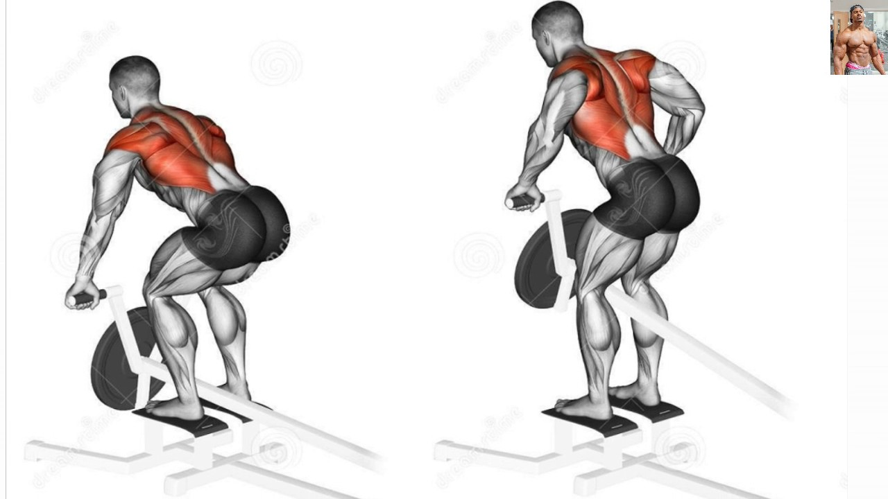 Workout Plans : Bodybuilding Exercises/ Best Back workouts For Mass ...