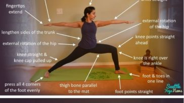 best yoga poses  workouts  top 5 yoga poses for